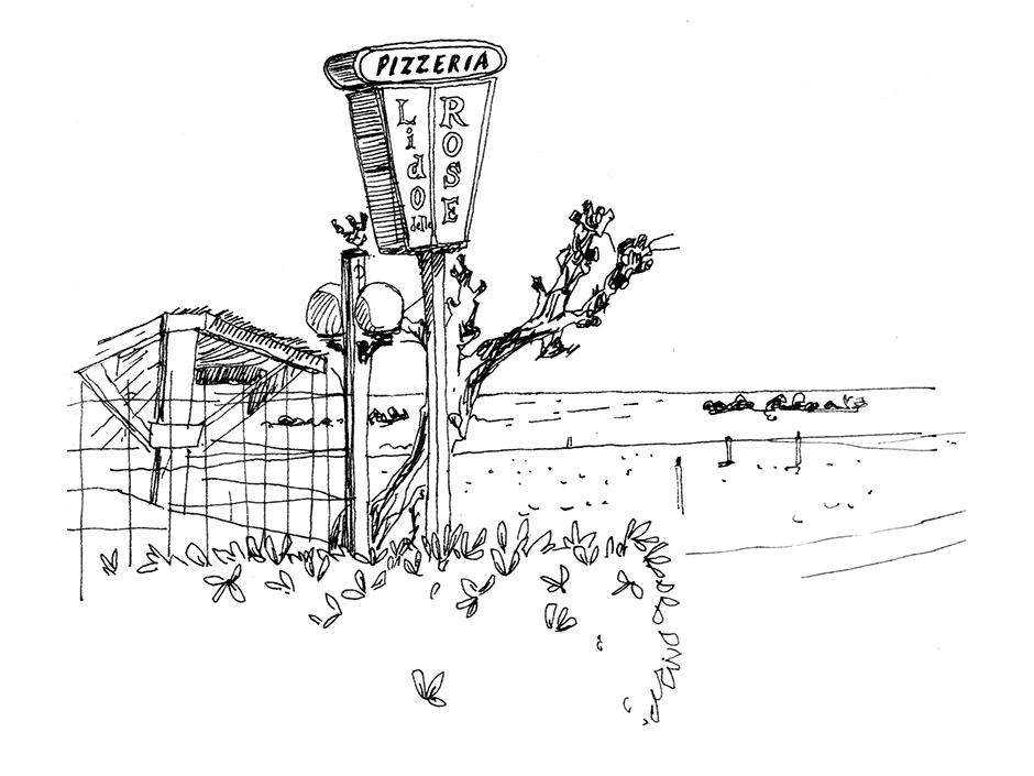 Lidodellarose